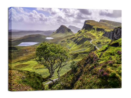 Big_scotland_85x113_st304