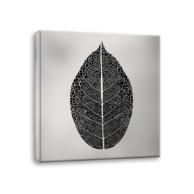 Middle_ex520_silver_leaf_65x65_s