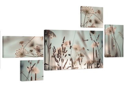 Big_st569_dandelion_set_70x150_s