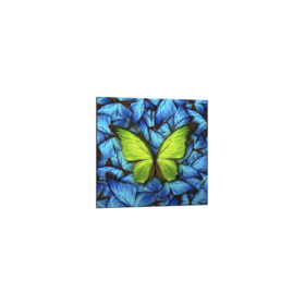 Middle_butterfly_blue_20x20_gl183_s