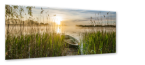 Small_ex579_boat_in_the_grass_50x125_s